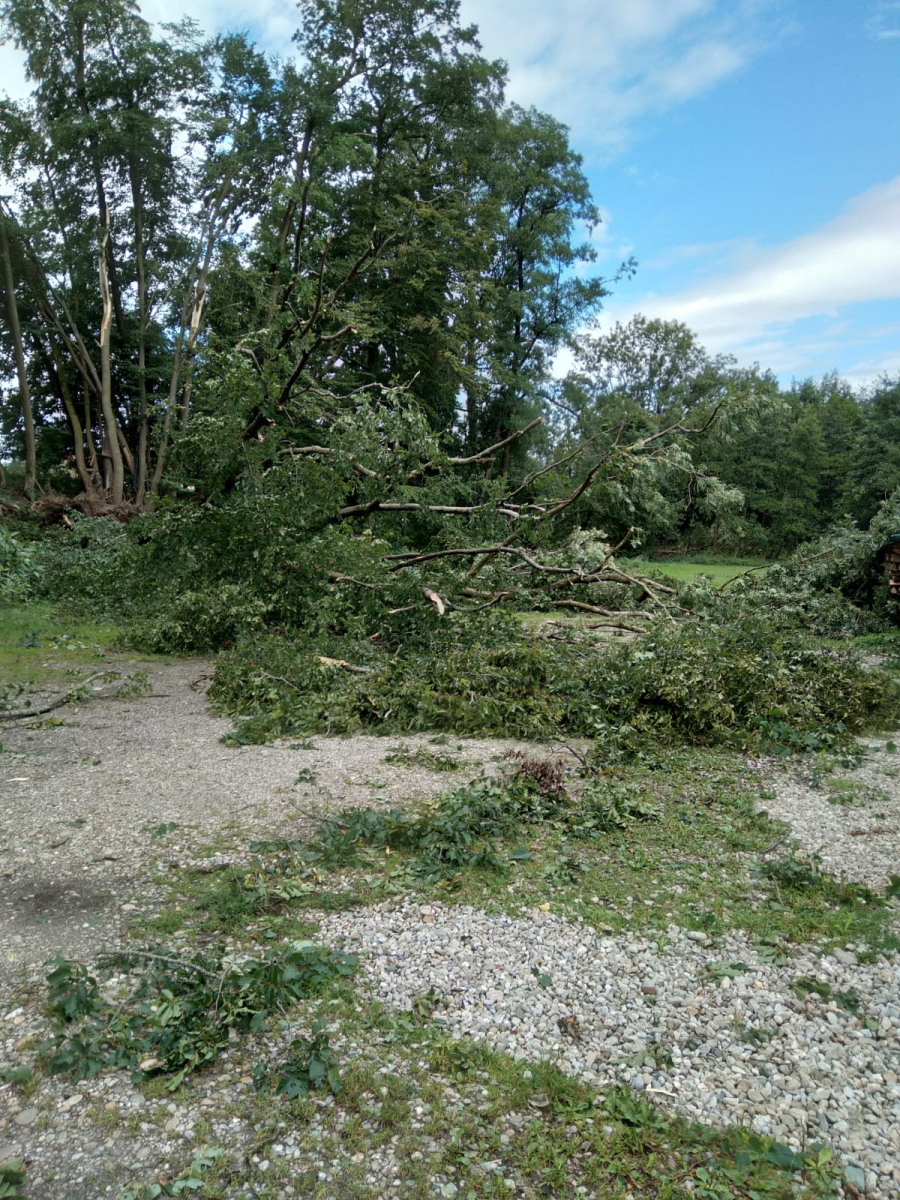 Sturm über Braunau August 21
