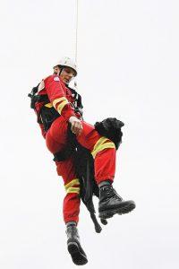 Rettungshund Flug