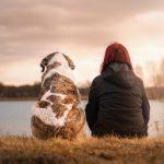 Hund und Frau am Wasser